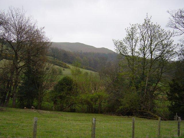 Latrigg, Walla Crag, High Rigg - 15th April 009