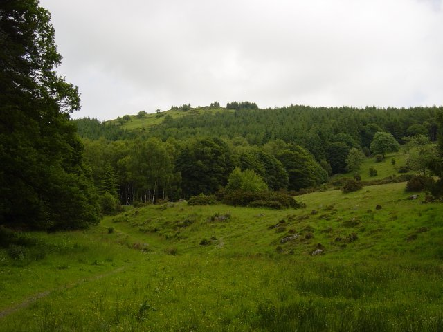 7th June - Staveley Fell 001