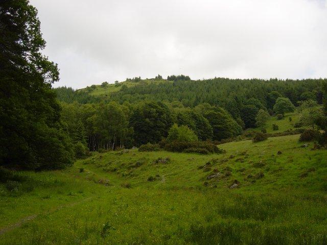 7th June - Staveley Fell 001