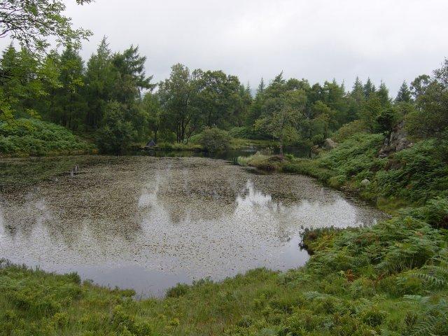 6th August - Holme Fell 017