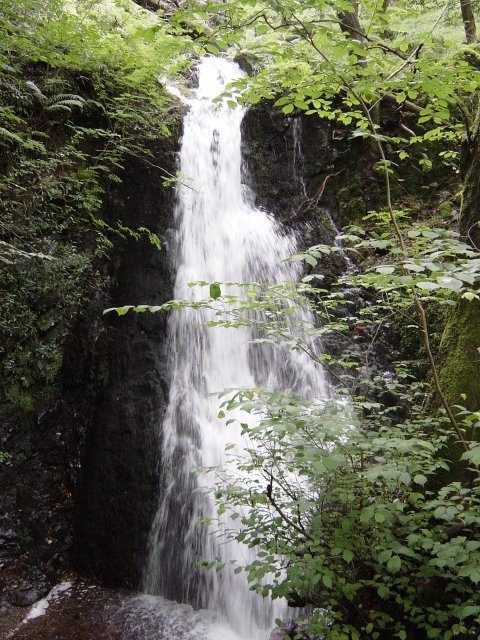 6th August - Holme Fell 046