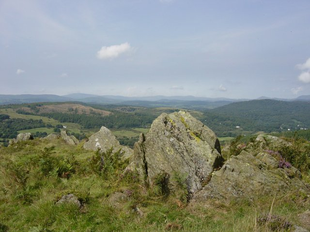 11th August - Newton Fell 035