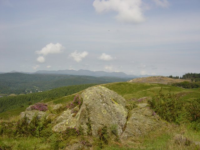 11th August - Newton Fell 034