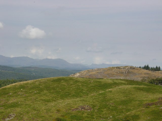 11th August - Newton Fell 038