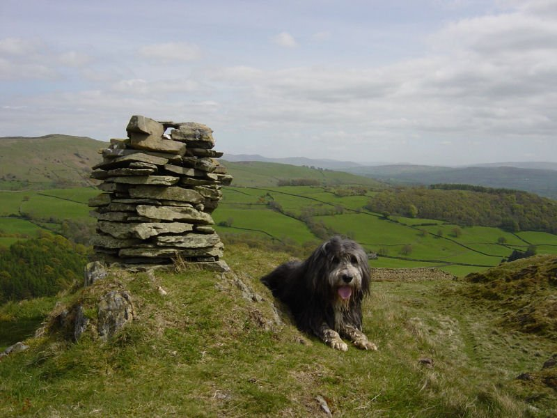 Hugill Fell - 4th May 011