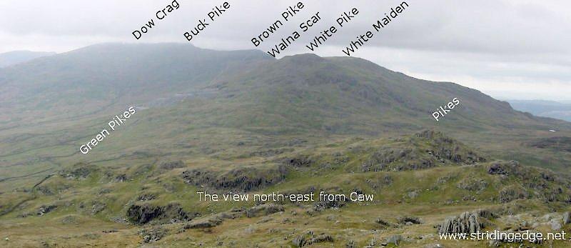 Caw - Panorama5
