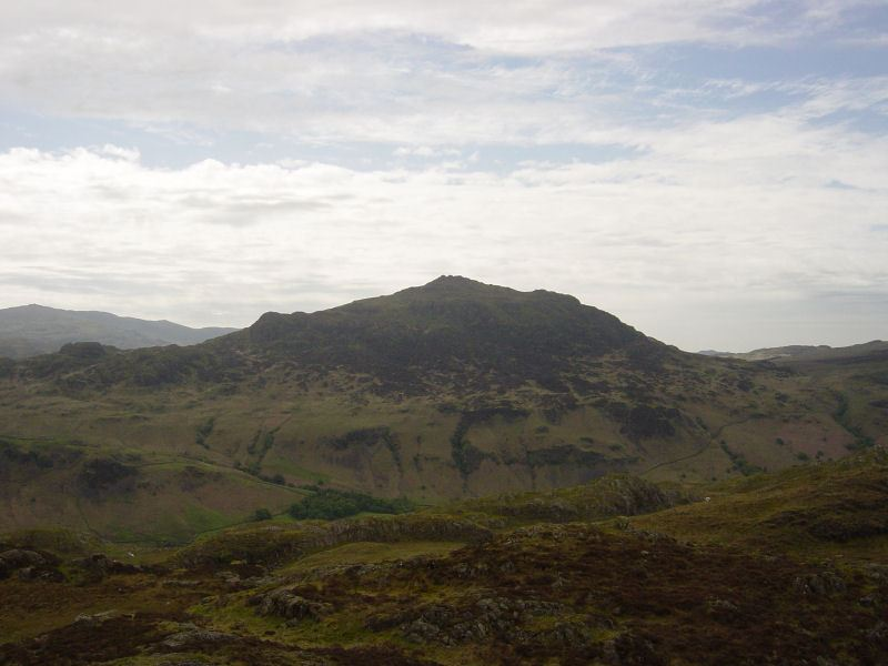 Lower Eskdale - 27th May 011