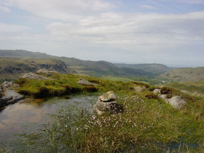 Lower Eskdale - 27th May 045