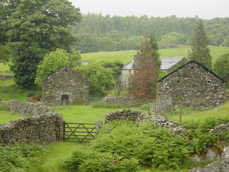 Woodland Fell - 15th June 018