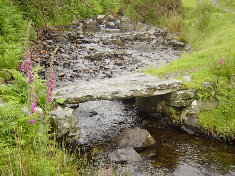 Woodland Fell - 15th June 019
