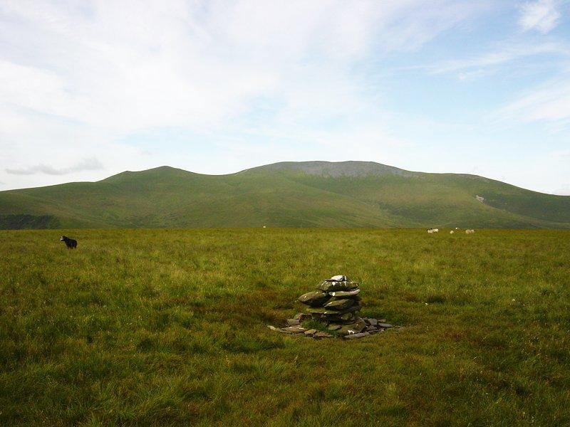 Back O' Skiddaw - 13th July 029