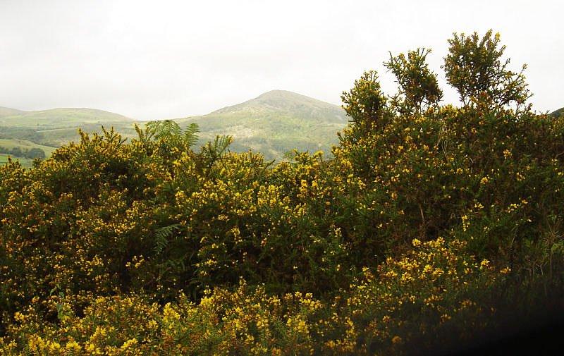 Dunnerdale Fells - 13th September 044