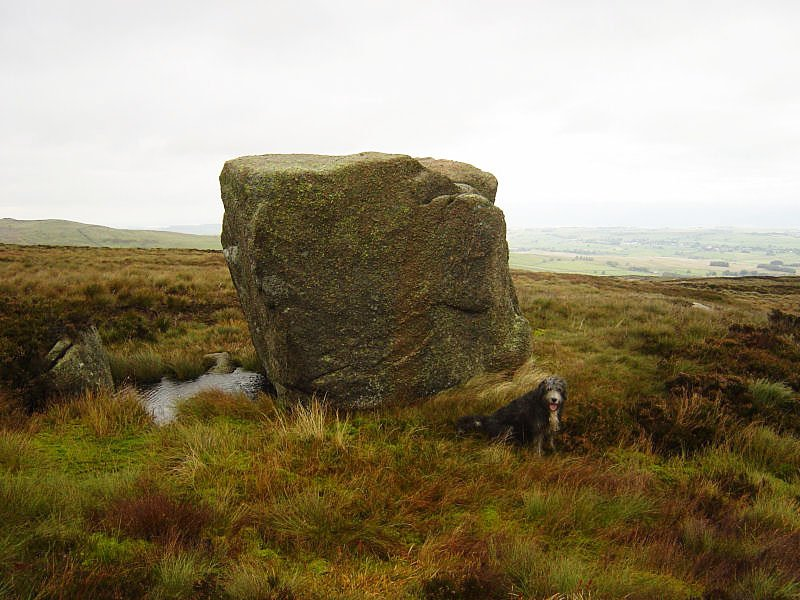 The Wet Sleddale Horseshoe - 10th October 015