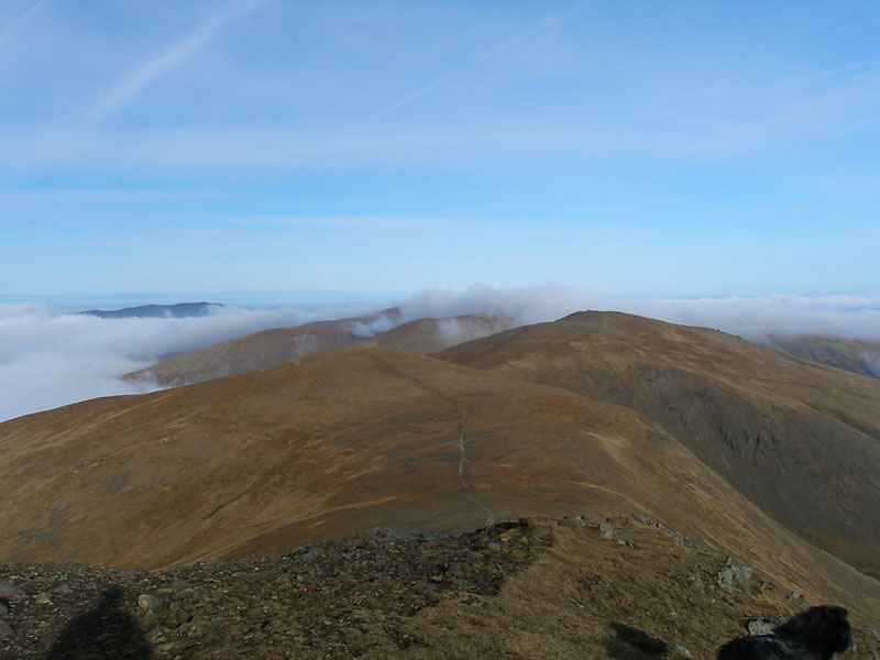 White Side, Raise and the Dodd's from Helvellyn Lower Man