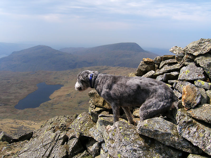 Angus tries out the famous cairn and viewpoint on Red Pike known as 'The Chair' which lies at its southern end. It looks like a big armchair made from stones - here the view is over Low Tarn to Middle Fell and Seatallan.