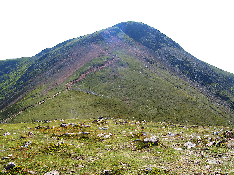 Red Pike from Dodd