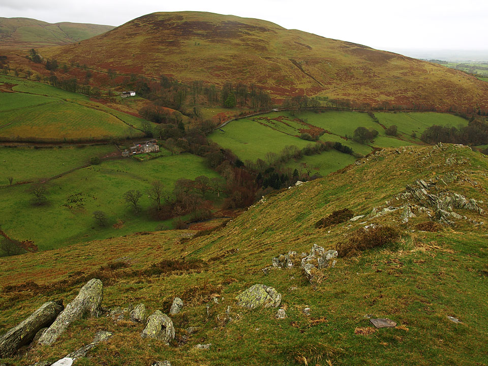 Ling Fell from Sale Fell