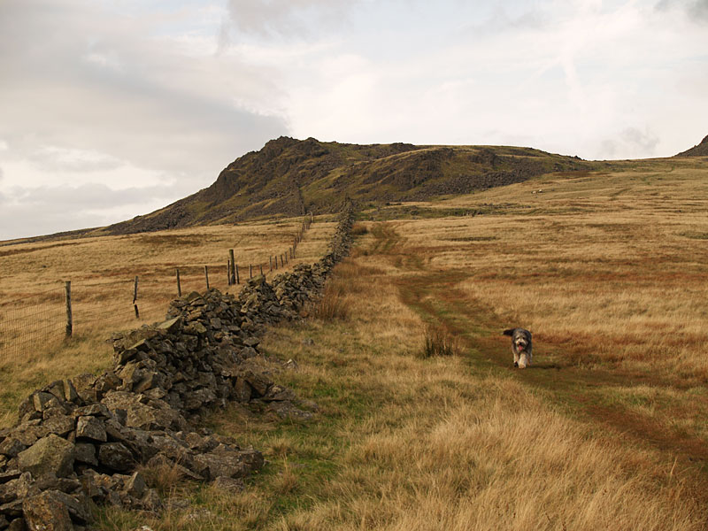 Great Paddy Crag ahead