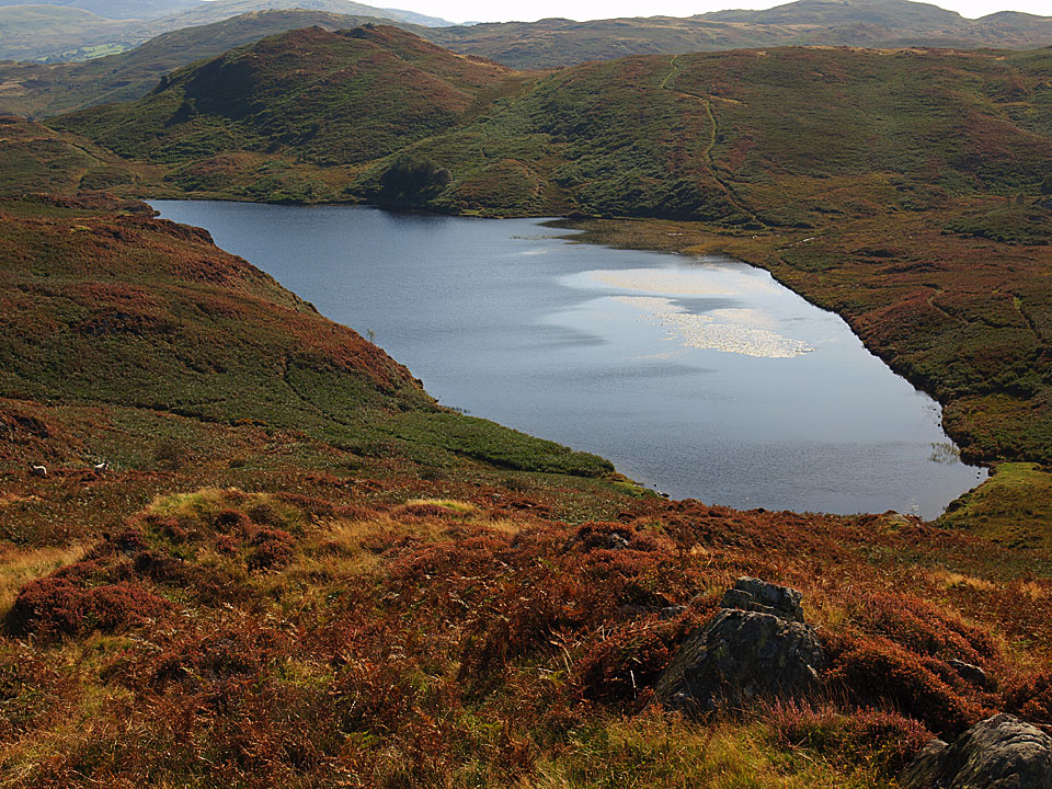 Beacon Tarn, known forever in our house as 'Sparkly Tarn' due to the moniker Connie gave it a couple of years ago