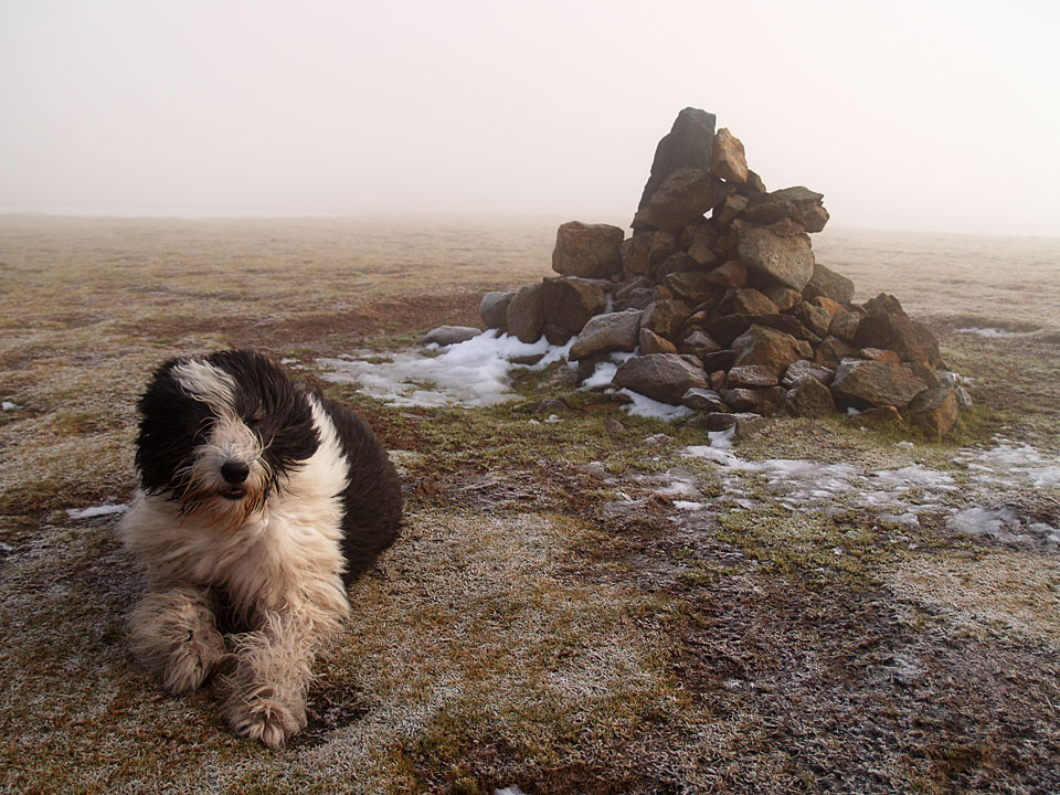 Into the freezing mist on the summit of Stybarrow Dodd