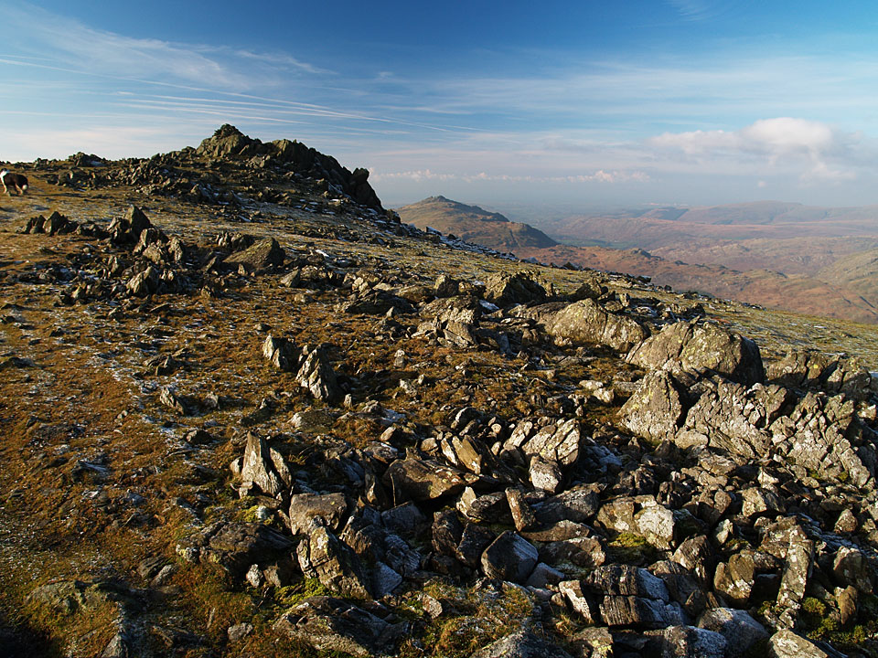 The summit of Grey Friar, Harter Fell beyond