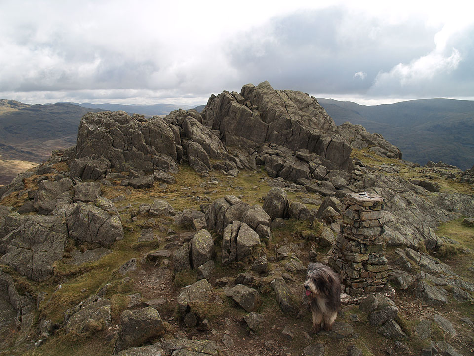 The true summit of Harter Fell