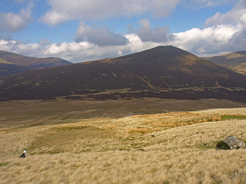 Great Calva from Blencathra