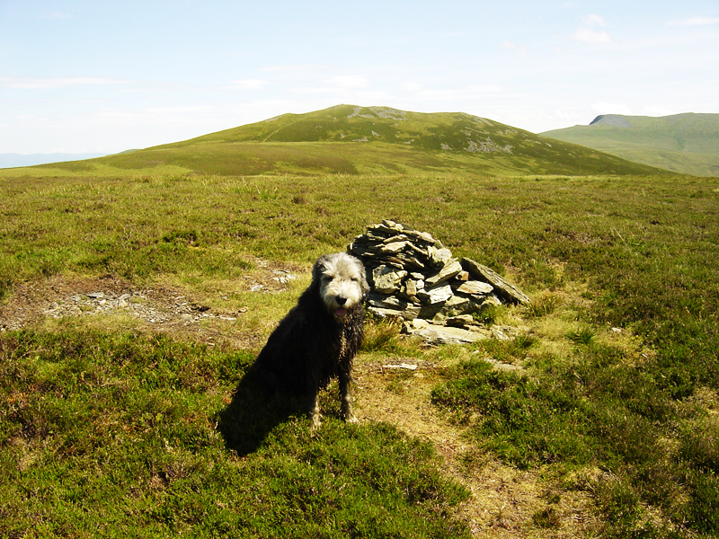 Great Calva from Little Calva.