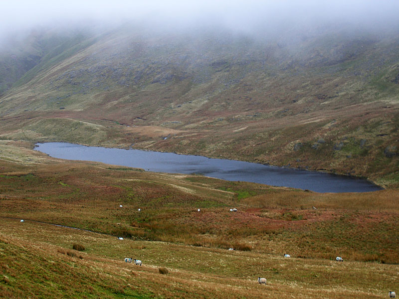 Floutern Tarn from Floutern Cop