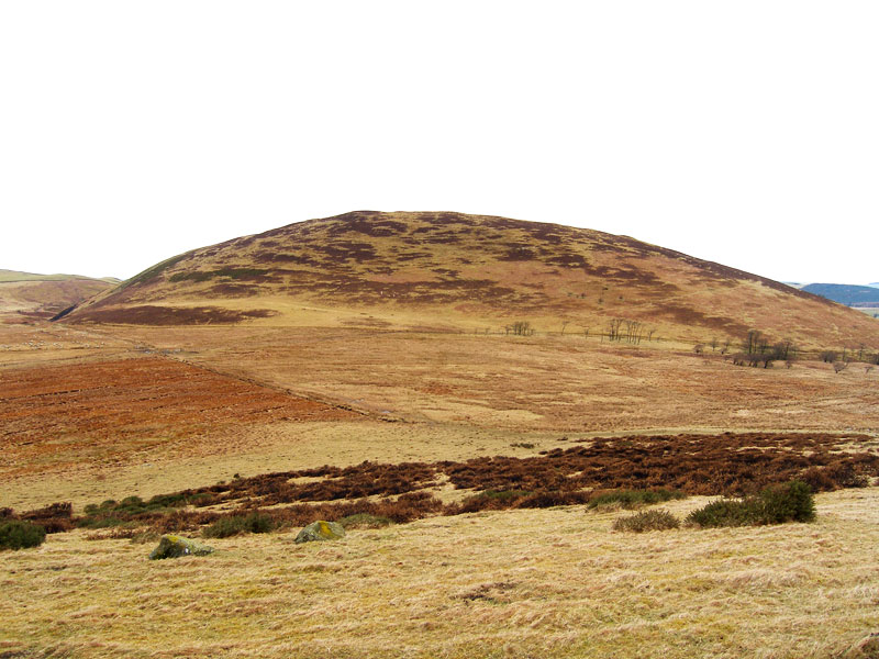 Ling Fell across Wythop Moss from Burthwaite Heights