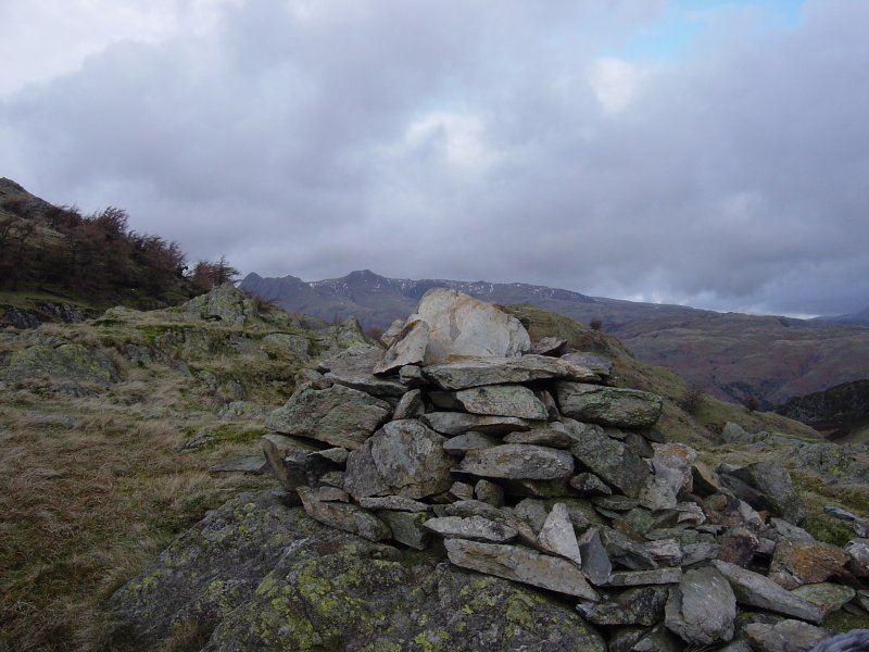 The Langdale Pikes from Haystacks (the Tilberthwaite one)