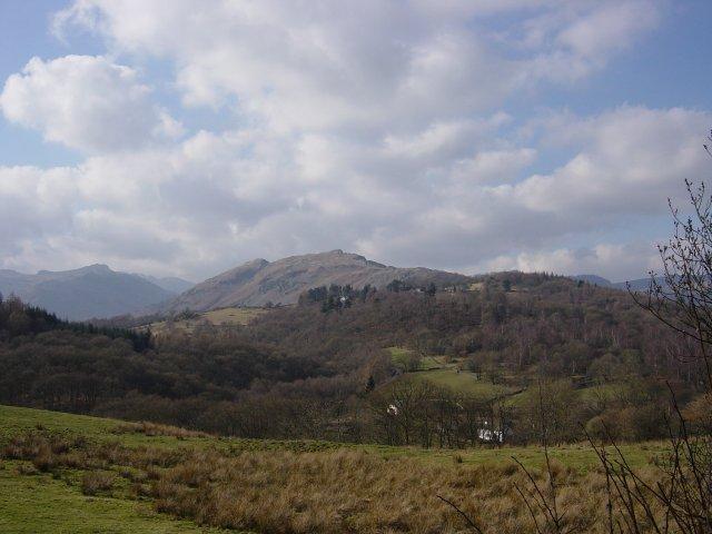 Lingmoor Fell - 19th February 2004 03511
