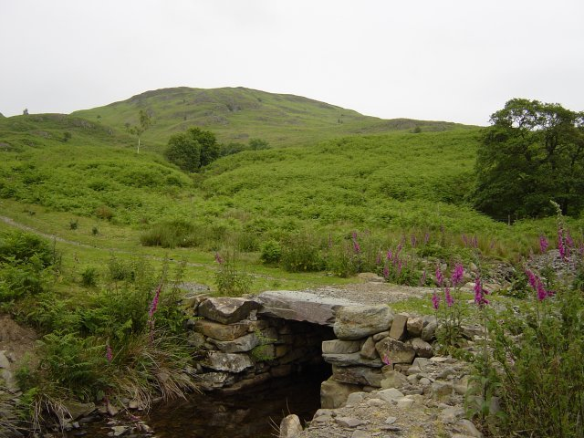 16th June - Woodland Fell 002