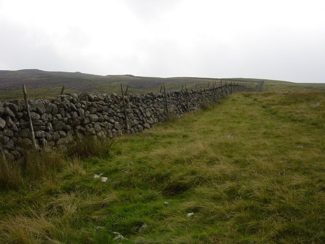 5th August - Lank Rigg 023