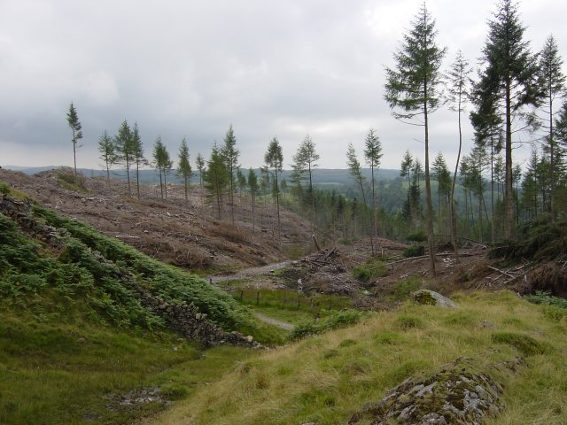 6th August - Holme Fell 041