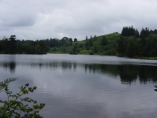 6th August - Holme Fell 044