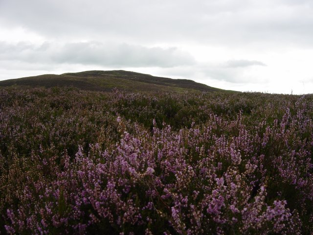 26th August - Potter Fell 006