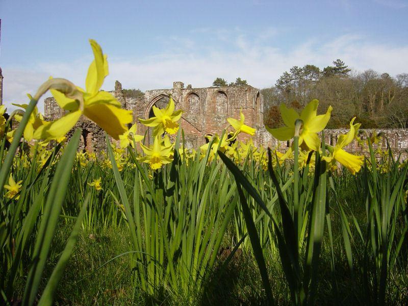 Furness Abbey- 24.03.05 007