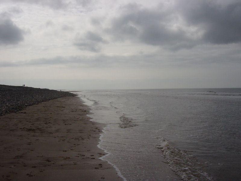 Walney Island - 28.03.05 010