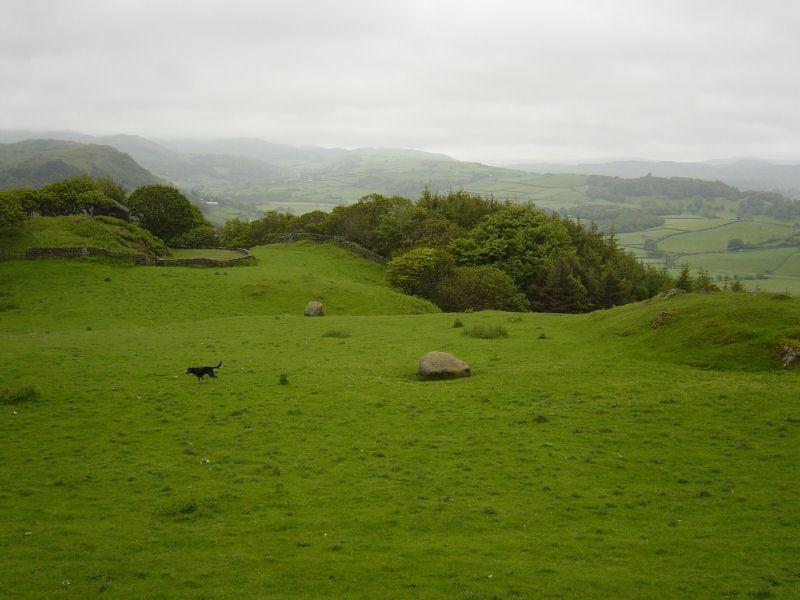 Duddon  - 2nd June 023