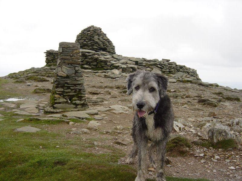 Coniston Old Man - 6th June 043