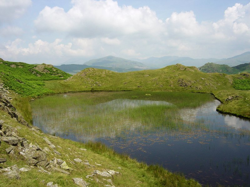Stickle Pike - 12th July 024