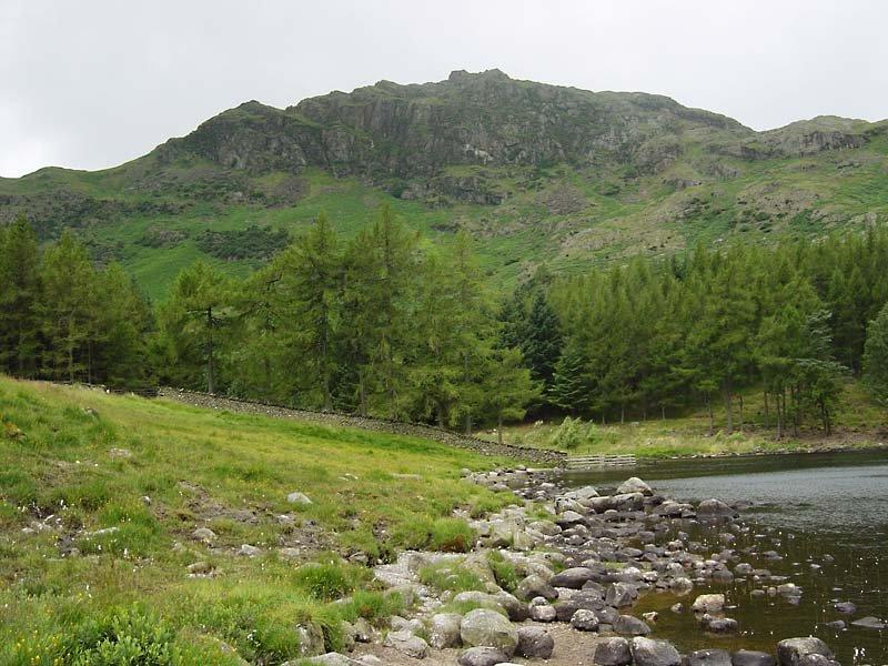 Little Langdale Tarn - 19th July 049