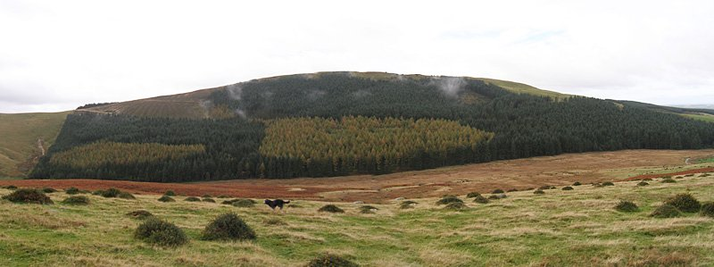 Flat Fell and Dent - panorama1