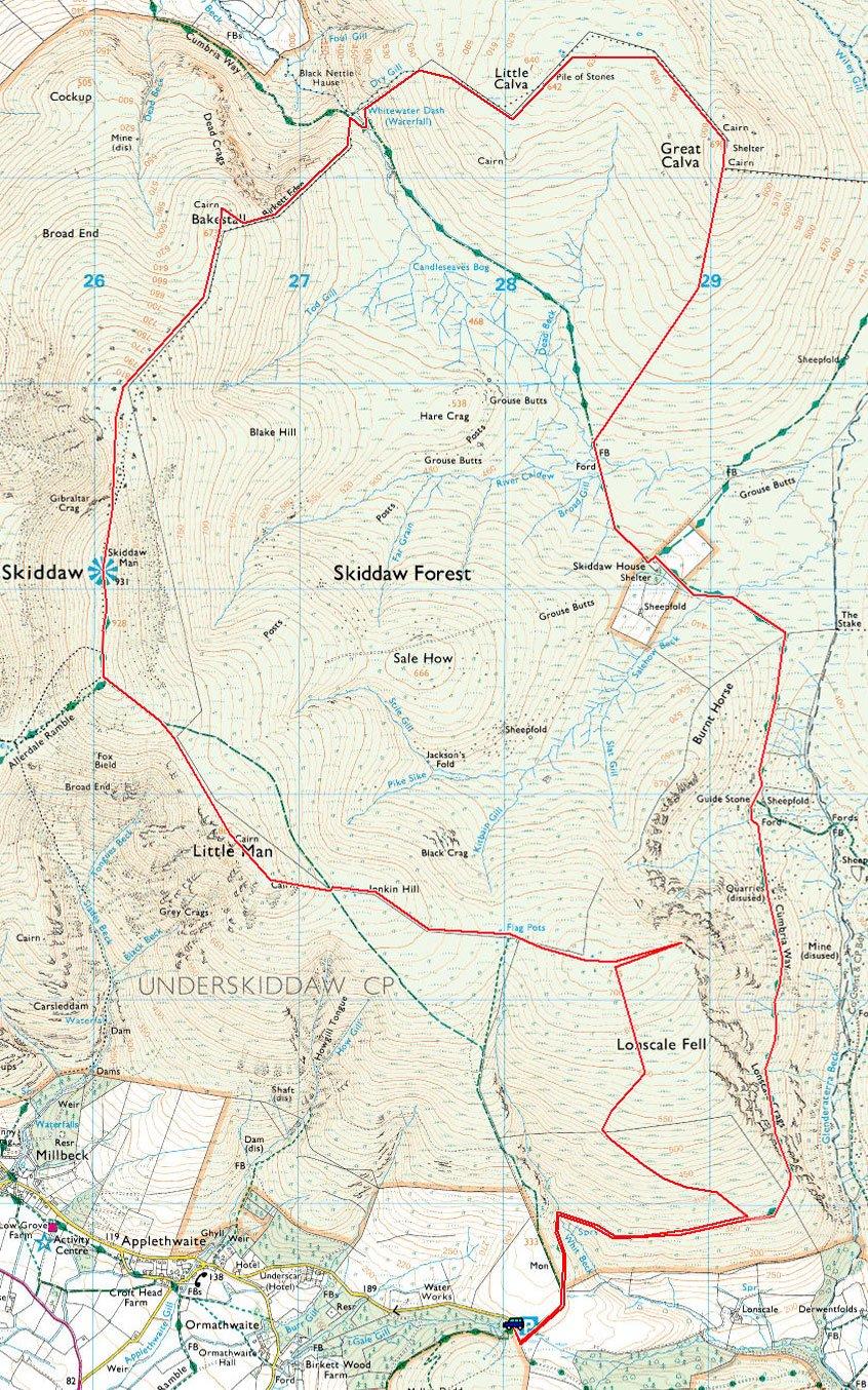 Skiddaw Forest