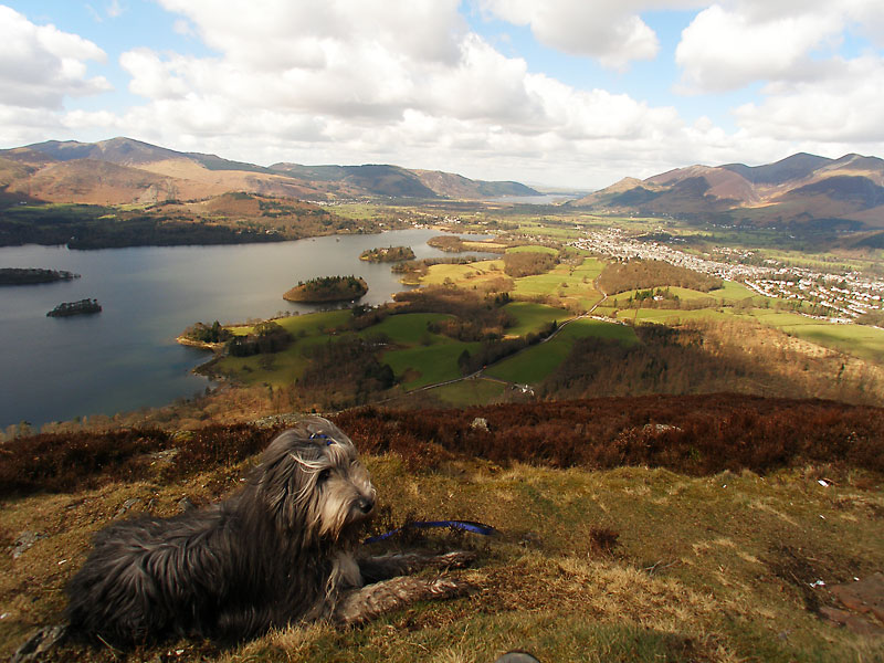 A panoramic view to the north-west from the summit of Walla Crag