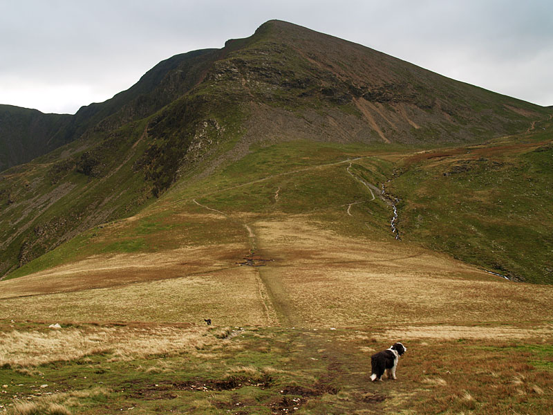 Crag Hill from Coledale Hause