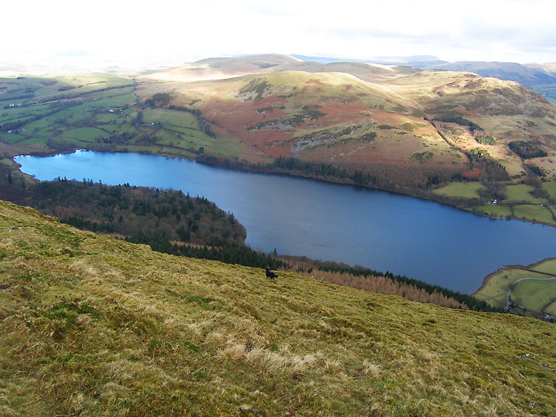 Loweswater from Carling Knott