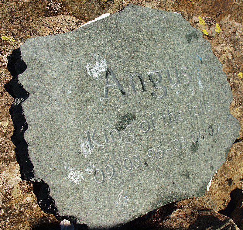 This slate plaque is a simple tribute to our dog Angus where his ashes are scattered. It is out of view unless you are looking for it - 100m to the south of the summit, in line with Beacon Tarn and facing south. Update 16.03.11...The plaque has now disappeared unfortunately :-(  Update 9th February 2014 - Casper's ashes are also scattered here (died 15.01.14).