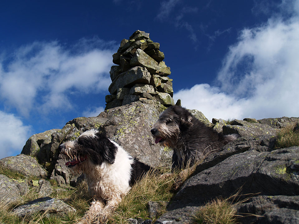 Admiring the view on White Pike